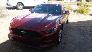 2015 ford Mustang Windshield Replacement
